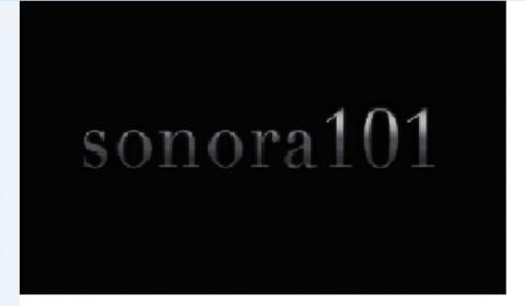 sonora 101-20